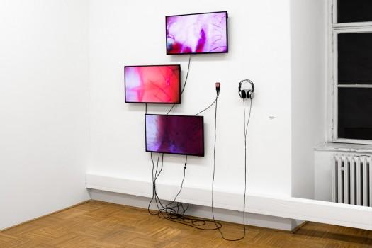 Ausstellungsansicht: »Essence 17«